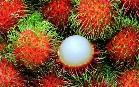 Mẹo nhận biết hoa quả chín cây hay chín thuốc